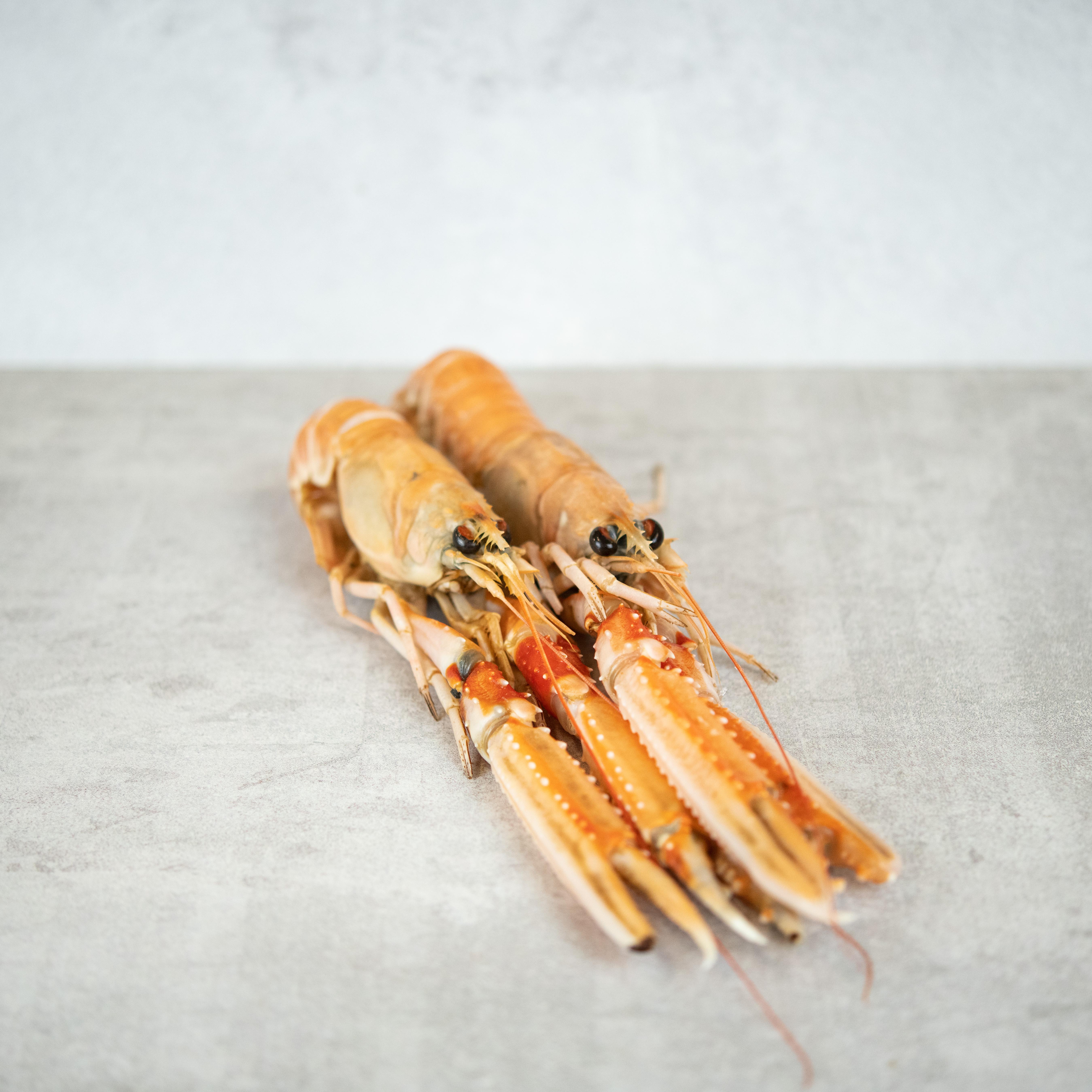 Kaisergranat_Langostinos_Markthalle20_Seafood